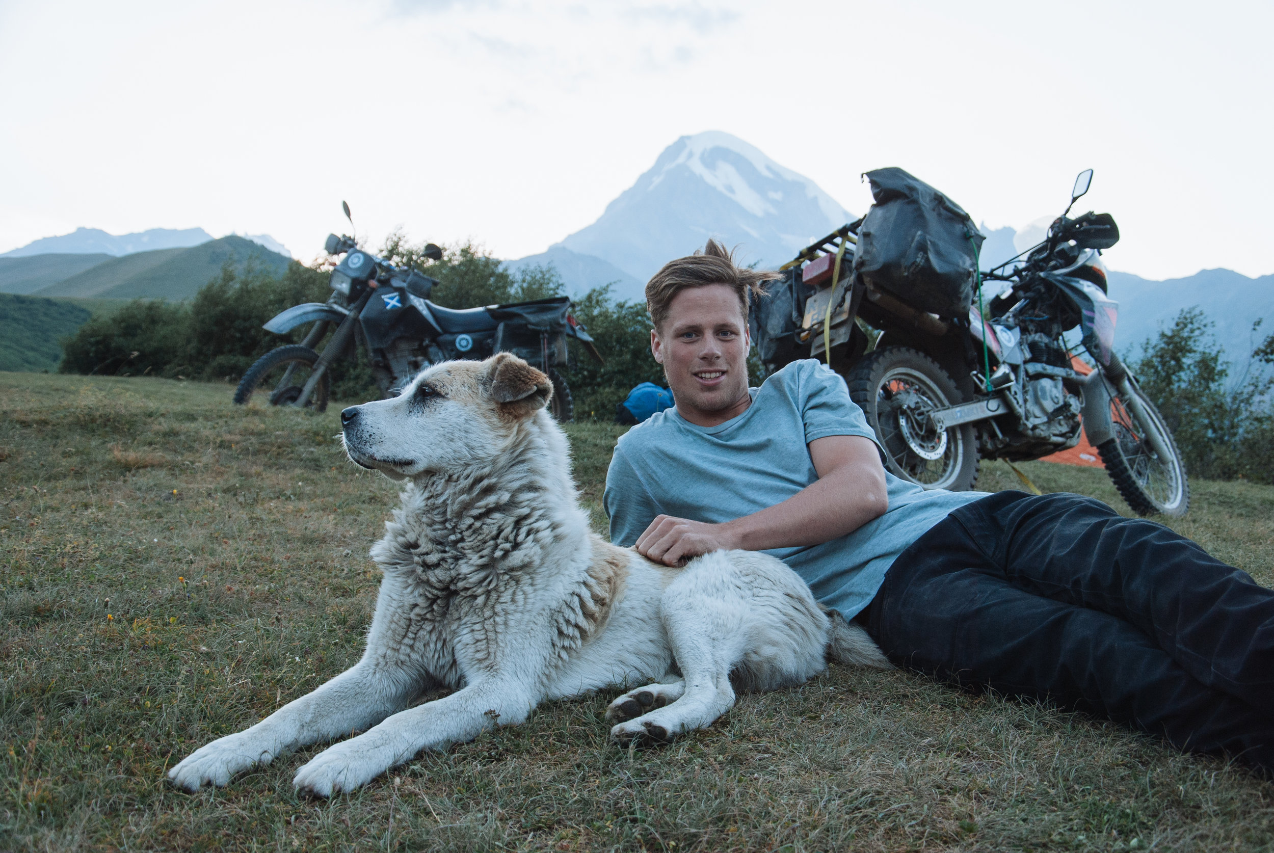 Making friends with dogs in every country