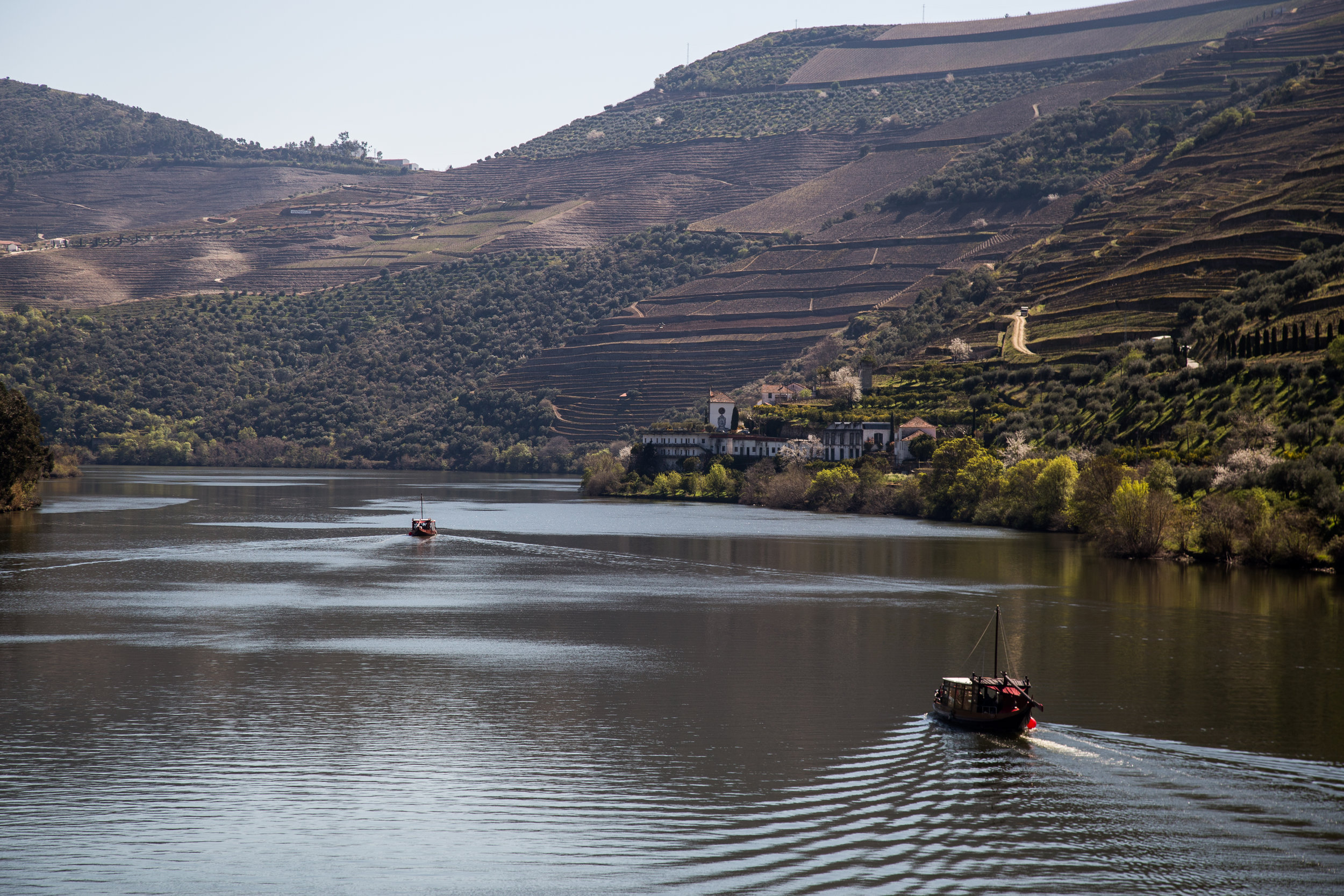 The Douro River, Valley famous for port production