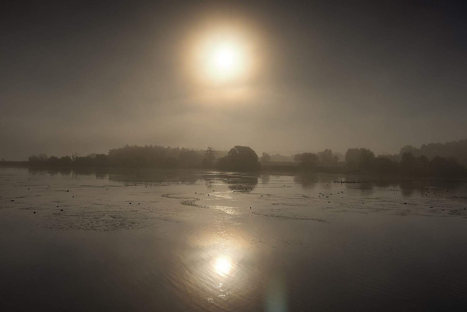 Sunrise with the mist lifting at Chew Valley Lake