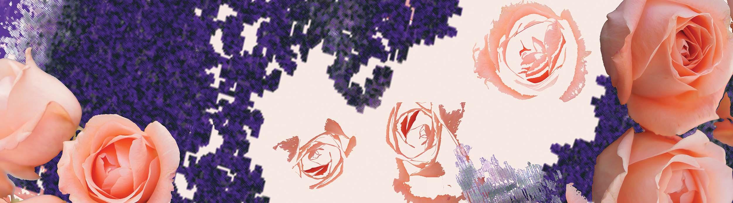 SpringRose.peach.lavender.Website Banner.jpg
