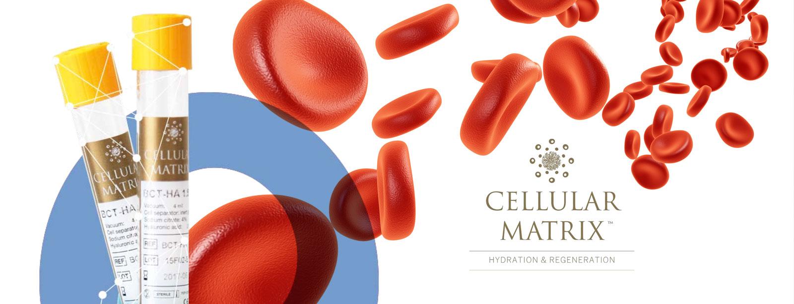cellularMatrix.jpg