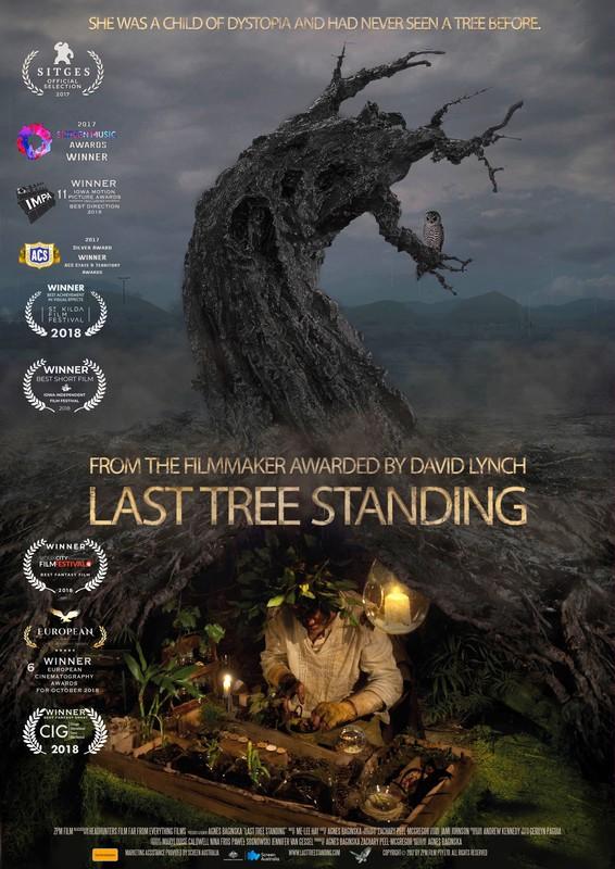 last tree standing - S2.jpg