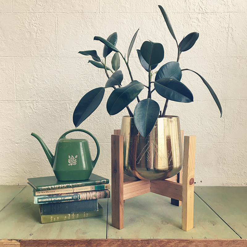 1_Wood Plant Stand.JPG