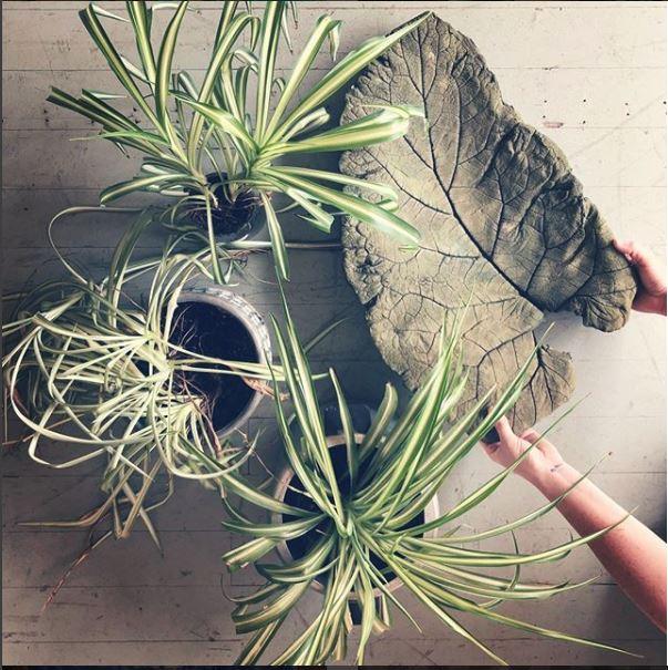 Cast Concrete Leaf.JPG