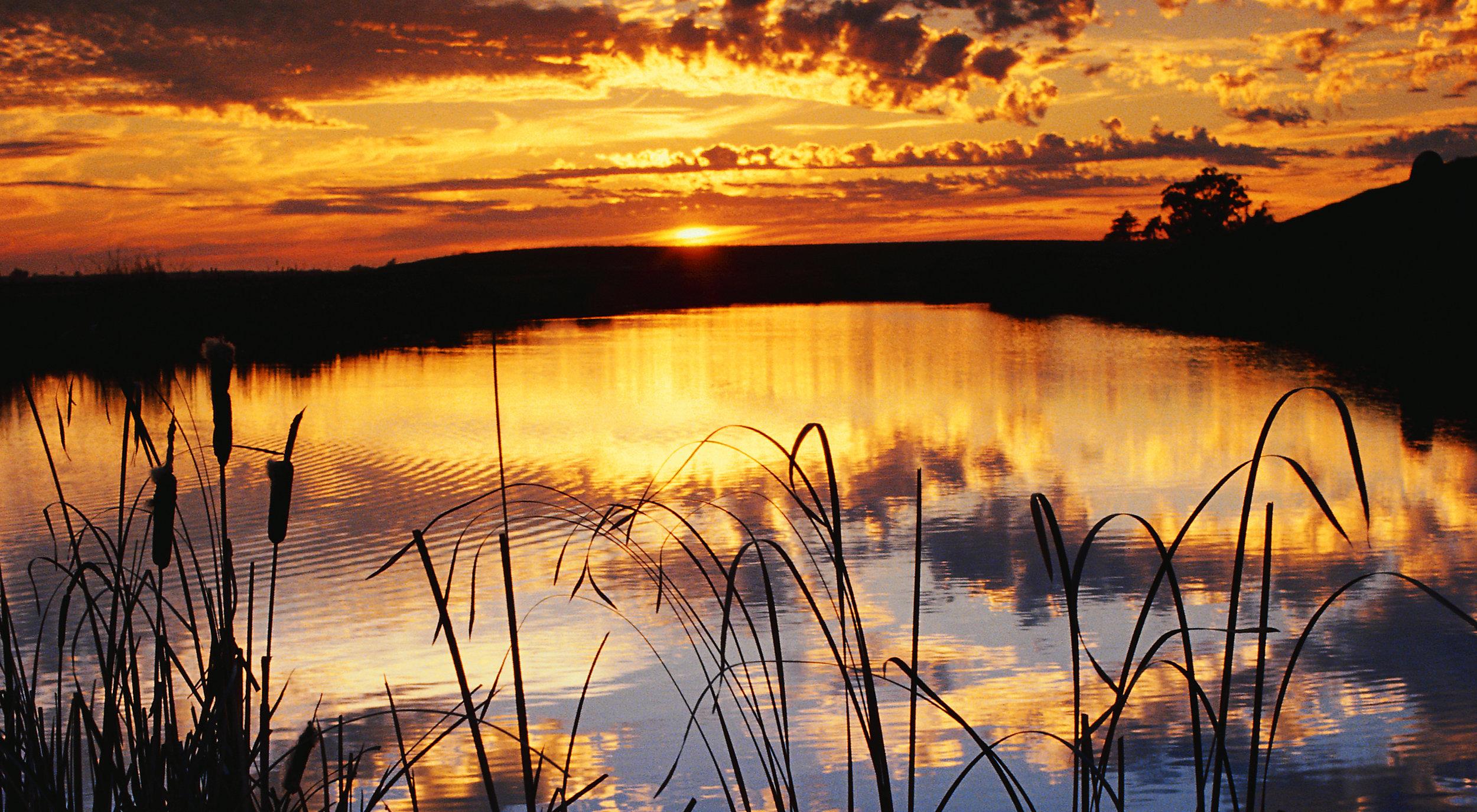 Chechessee Sunset.jpg