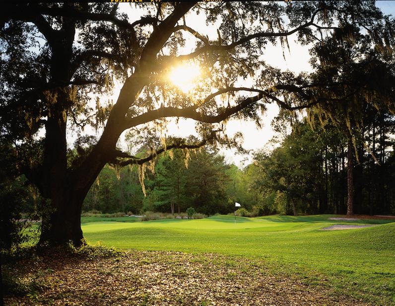 Golf Spring Island 2.jpg