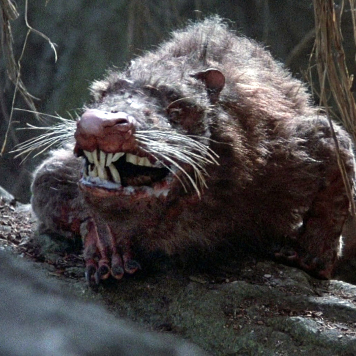 Rodent of Unusual Size - The Princess Bride