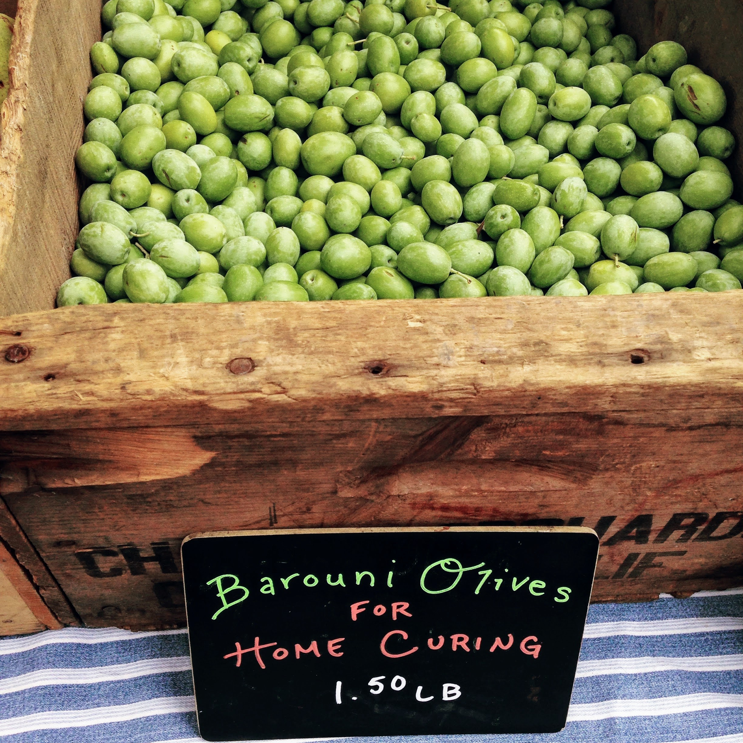 Home Curing Barouni Olives