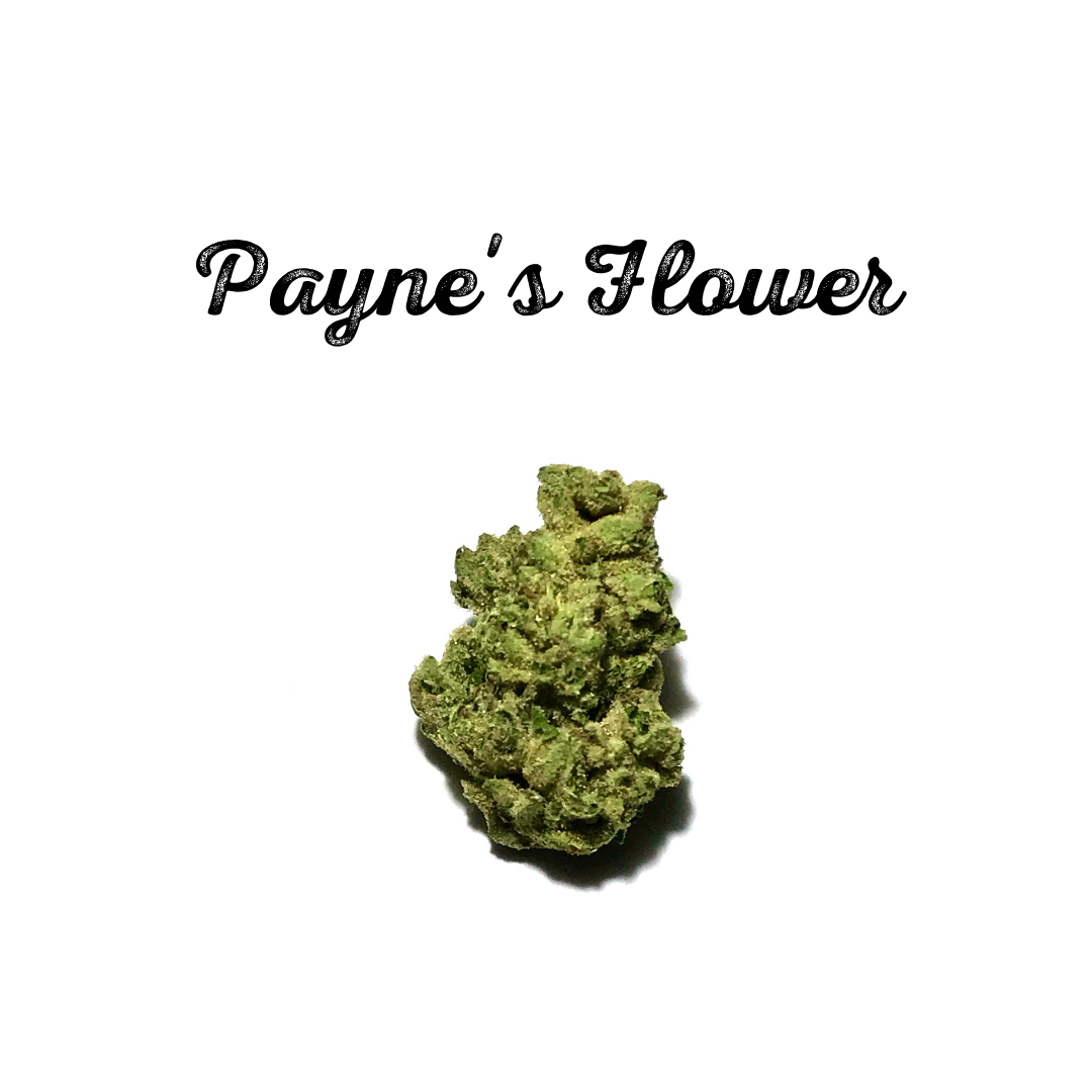 Payne's Flower.png