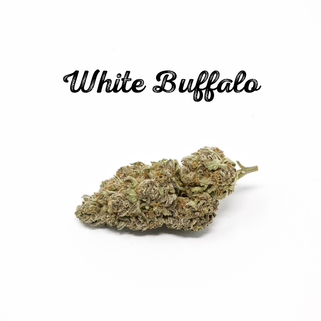 White Buffalo.png