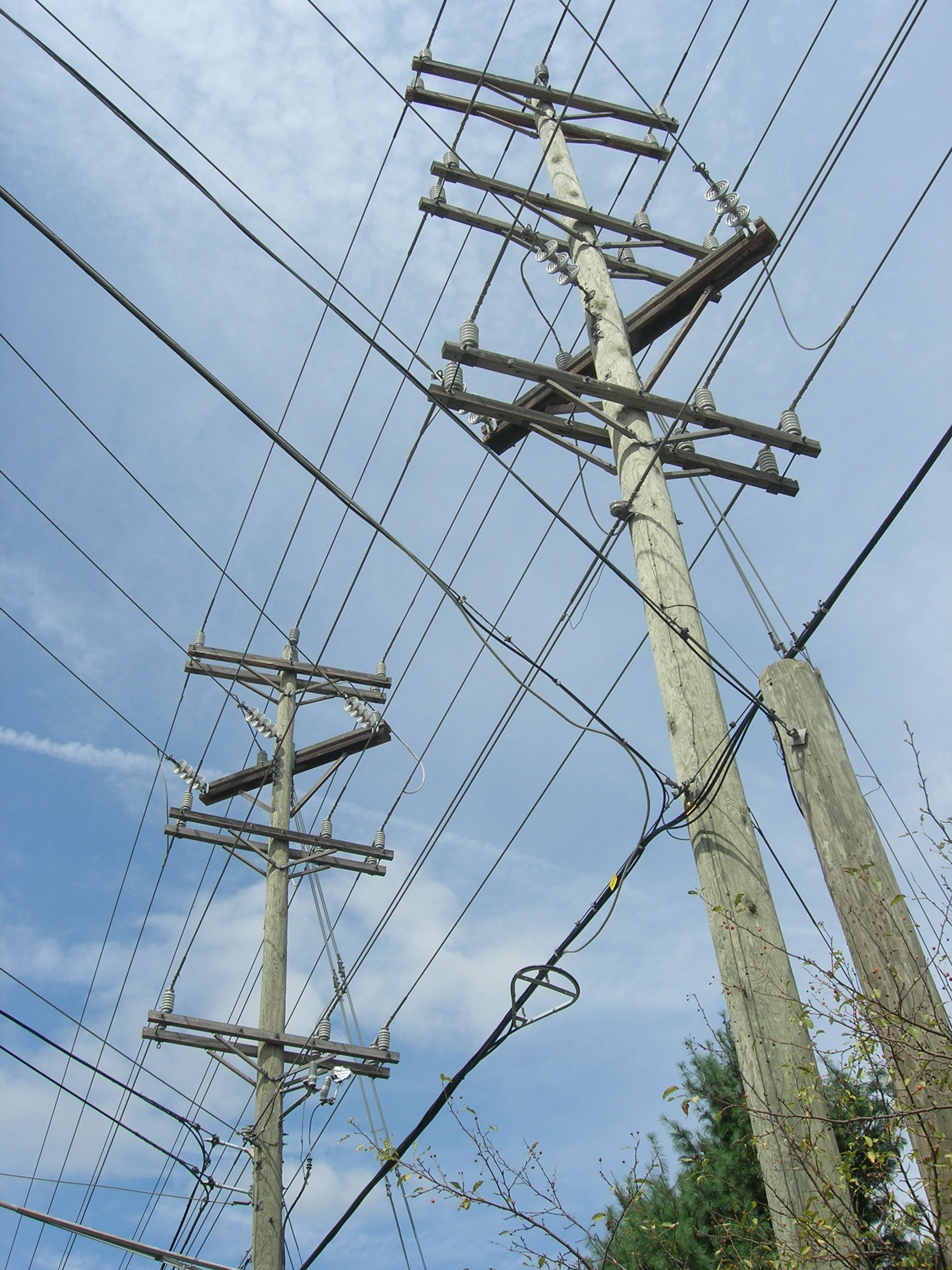 poles and wires.jpg