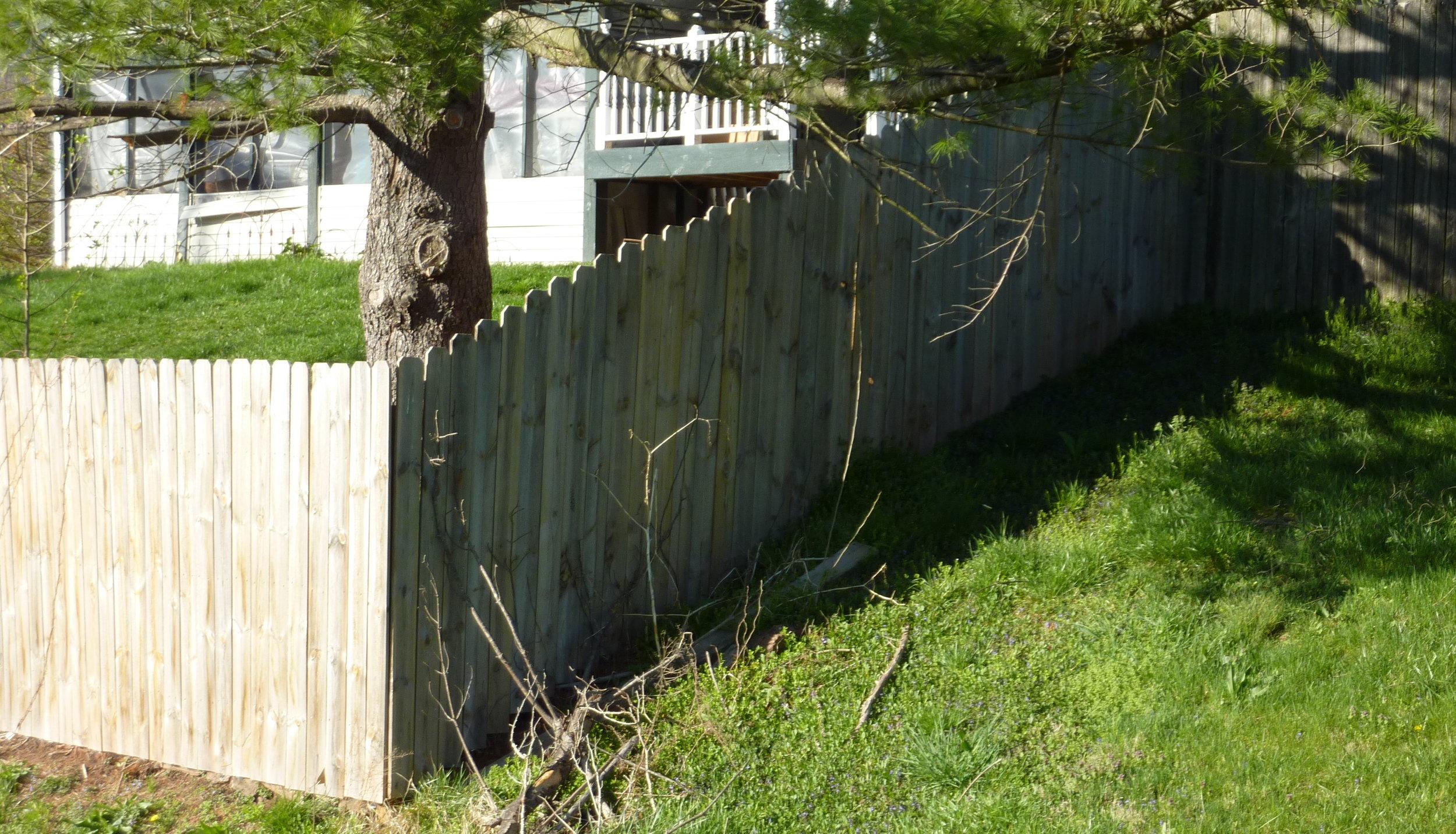 corner fence.jpeg