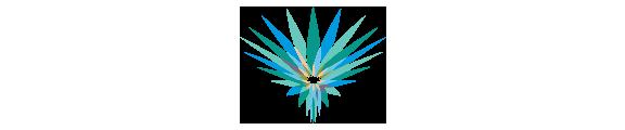 logo-icon.png