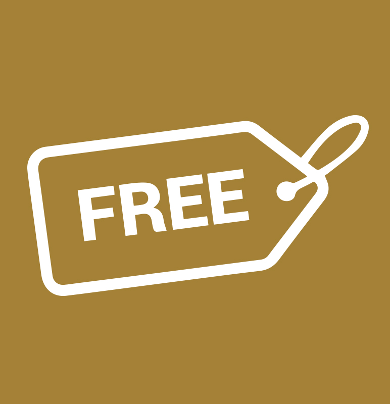 Free Initial Business & Tax Consultation -