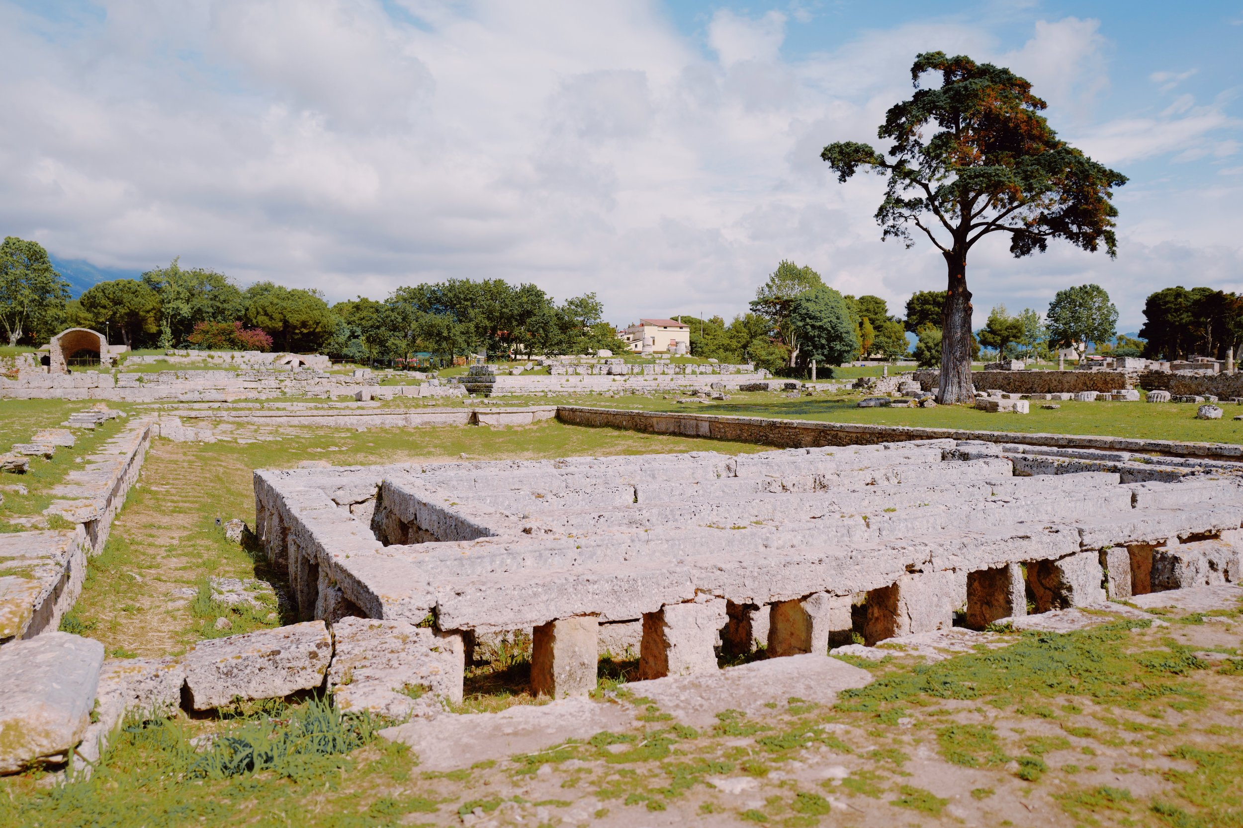 Swimming Pool at Paestum