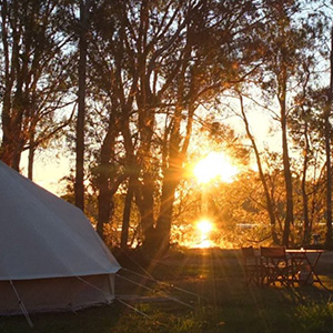 Simple Pleasure Camping - Forster