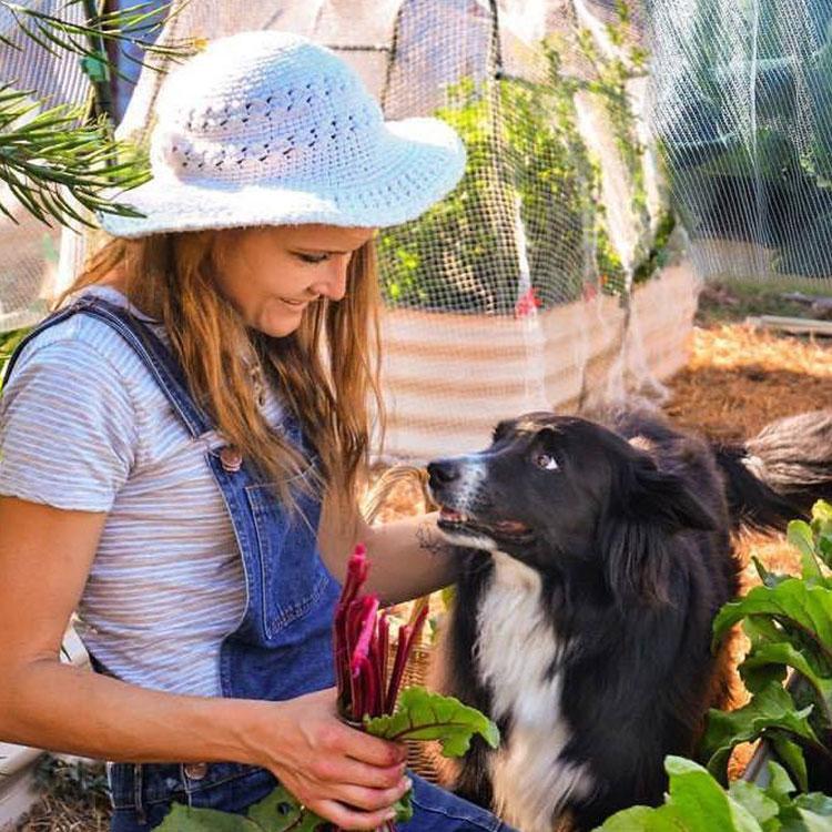Chelsea Hands - Workshops, Talks & Gardens