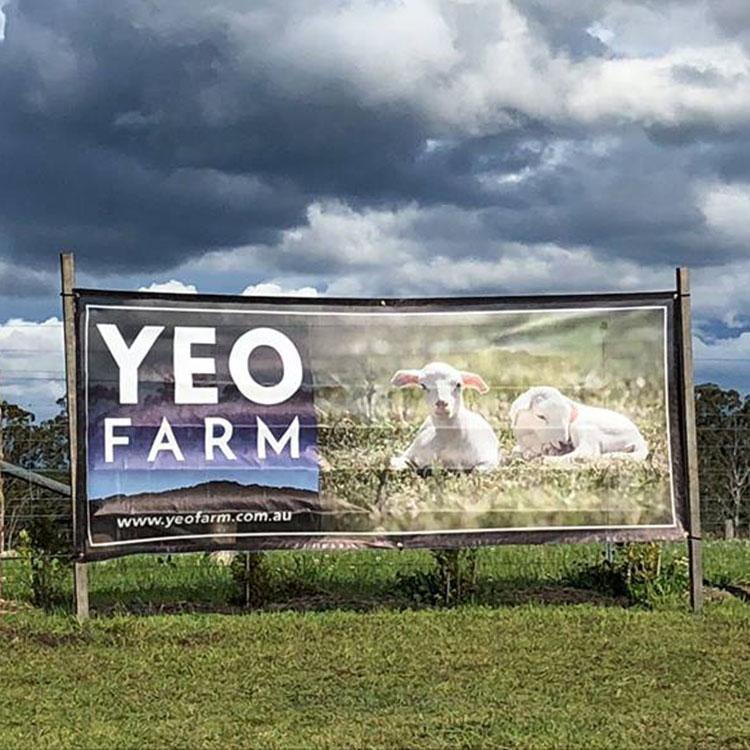 Yeo Farm - Producers & Installations
