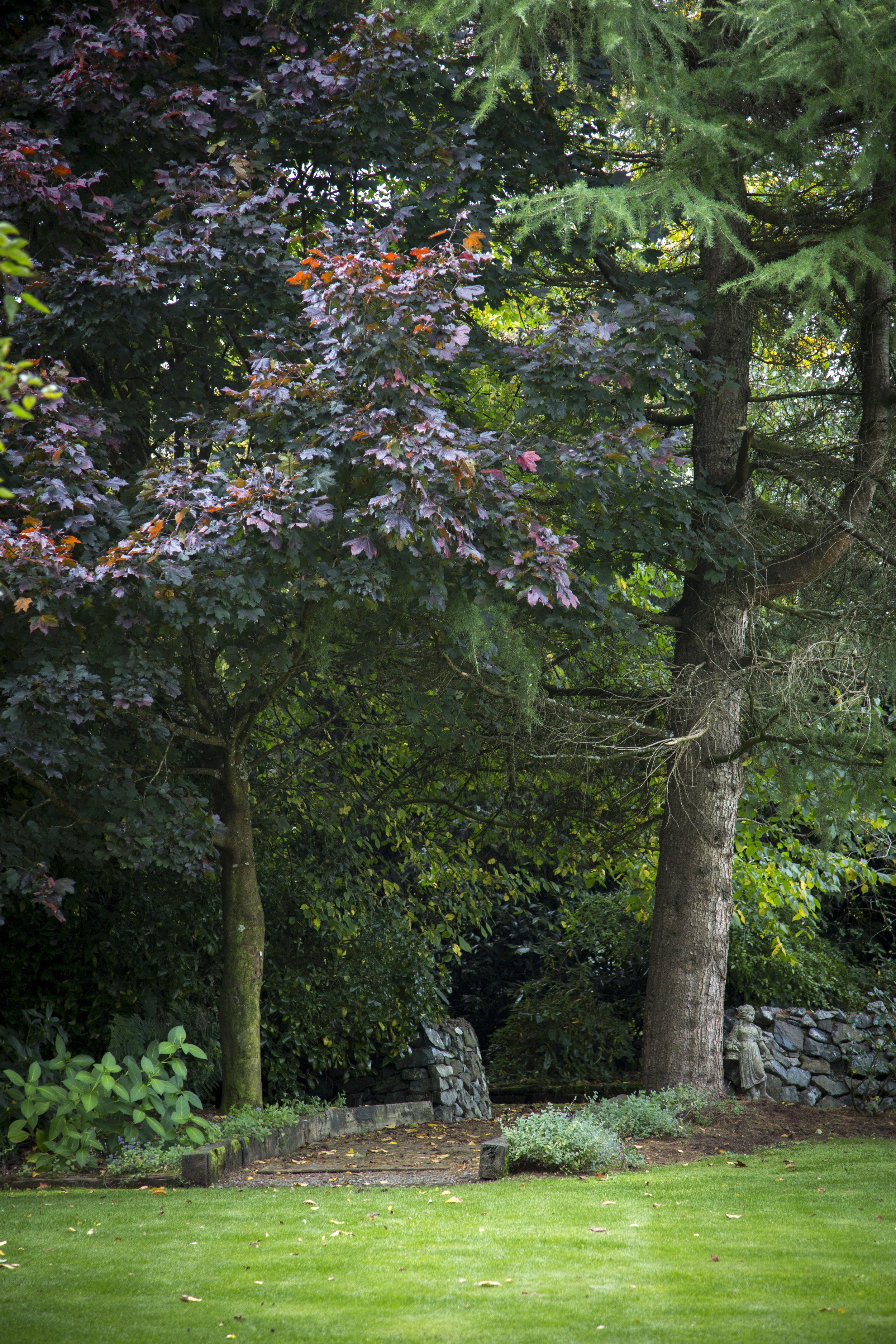 Hideaway Gardens168.jpg