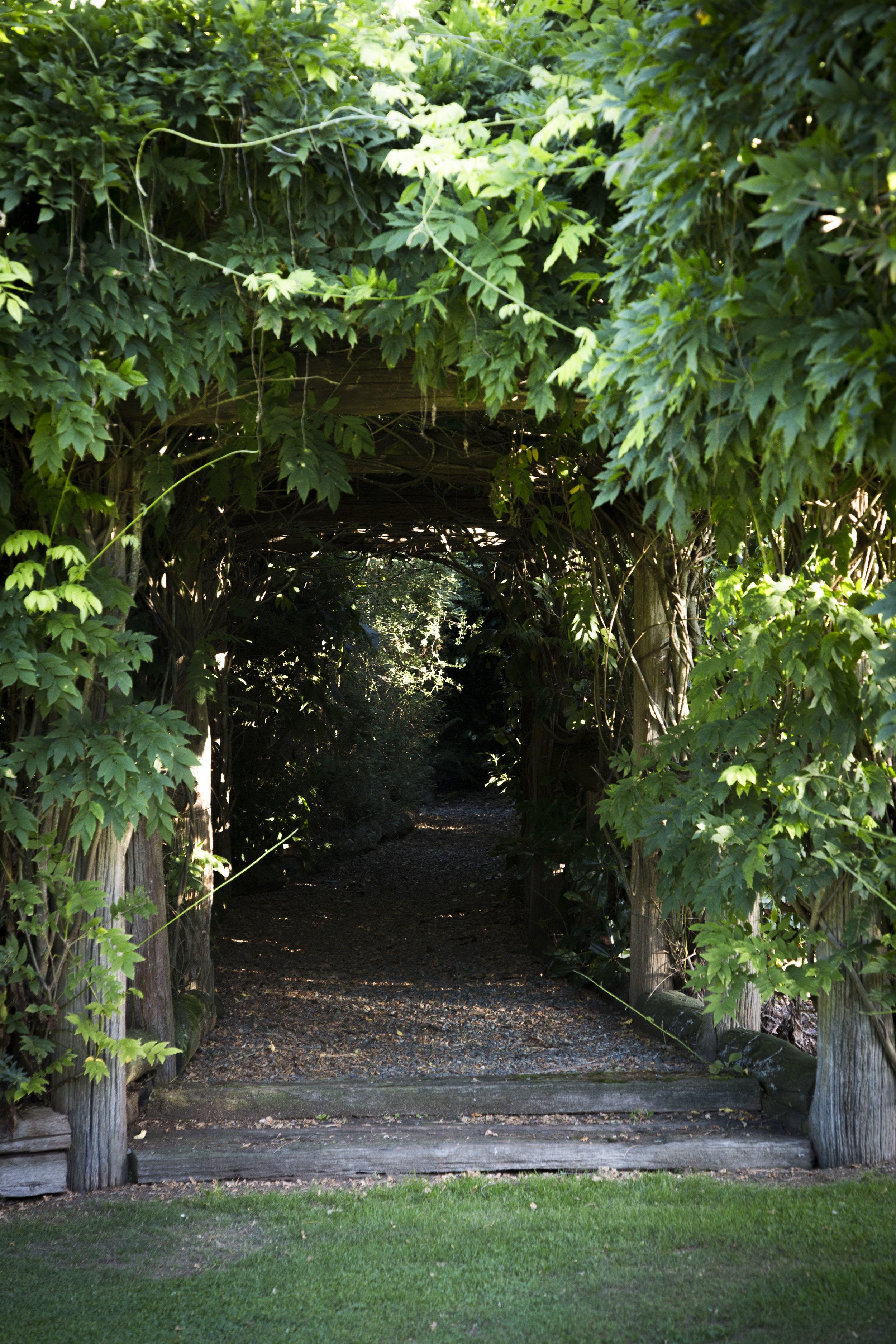 Hideaway Gardens262.jpg