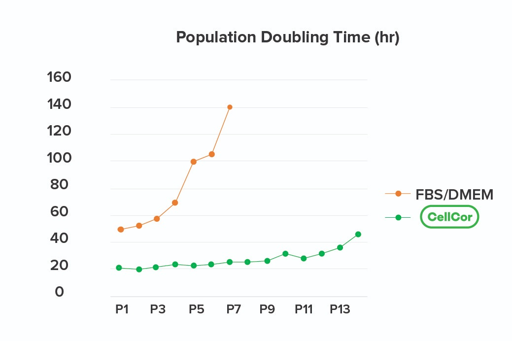 Population Doubling Time of CDM CellCor