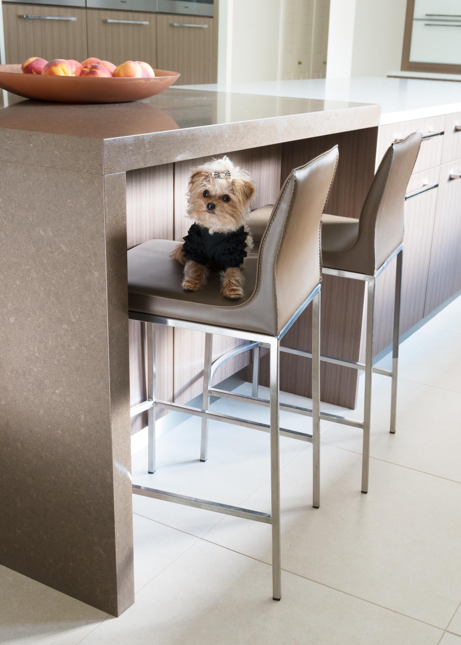 Contemporary Kitchen 3.jpg