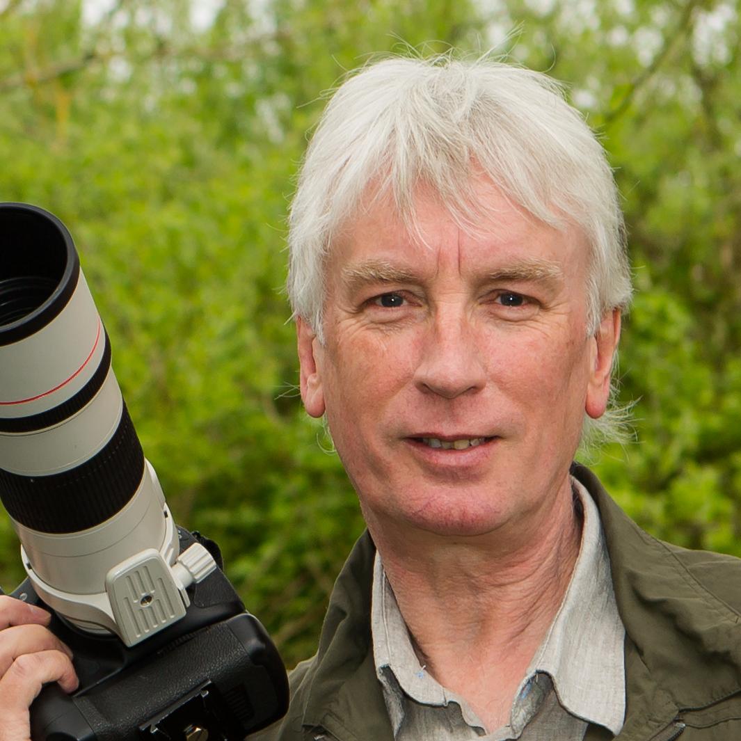Tom Langlands.jpg