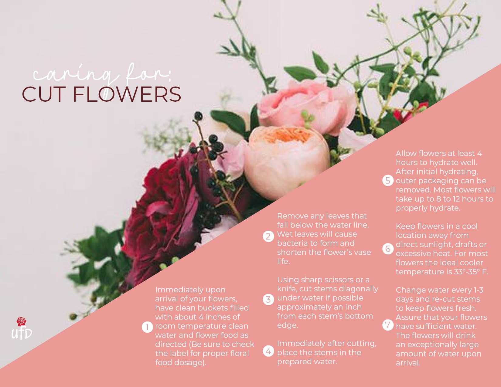 Floral Care-Tropicals.jpg