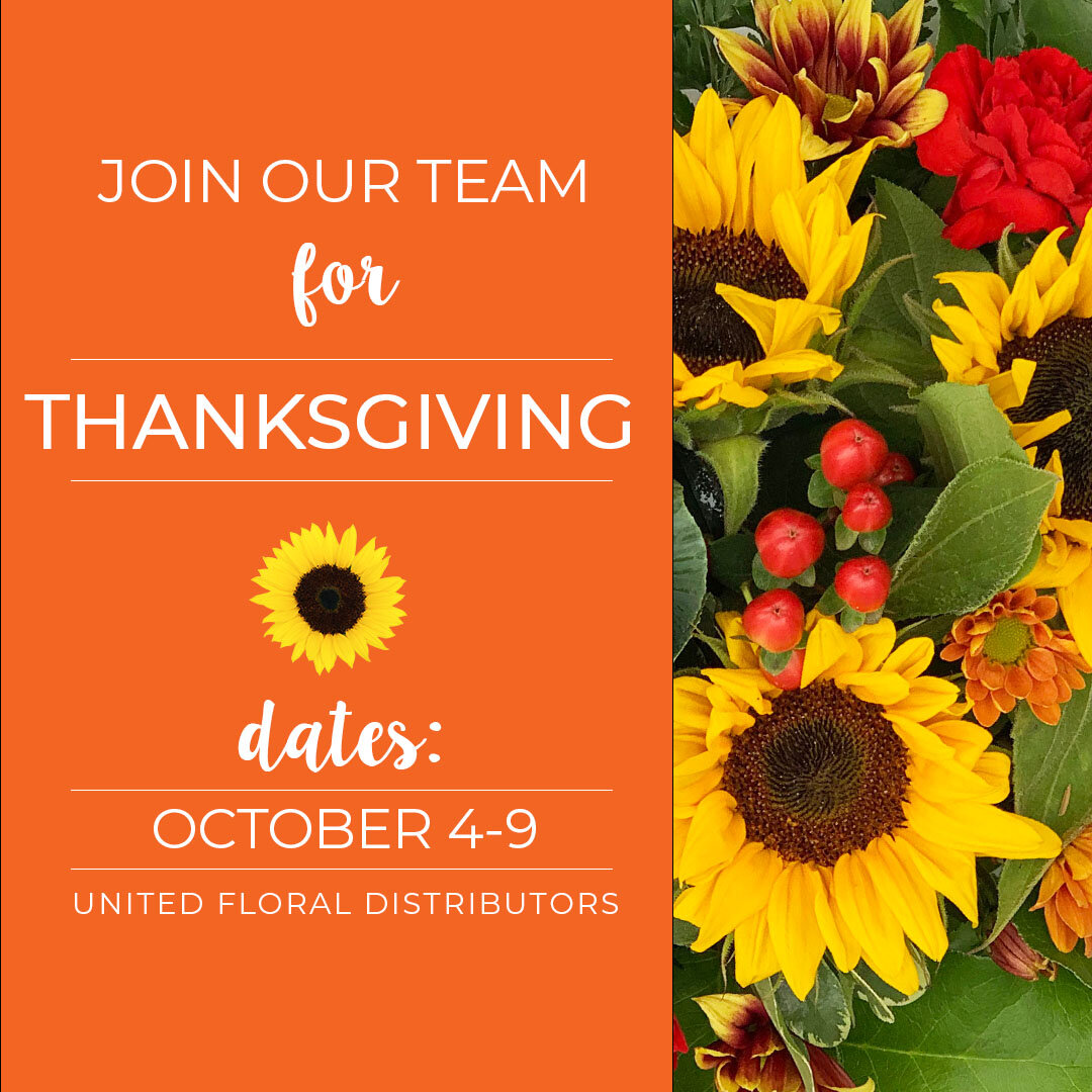 UFD - Thanksgiving Hiring - Sept 20.jpg