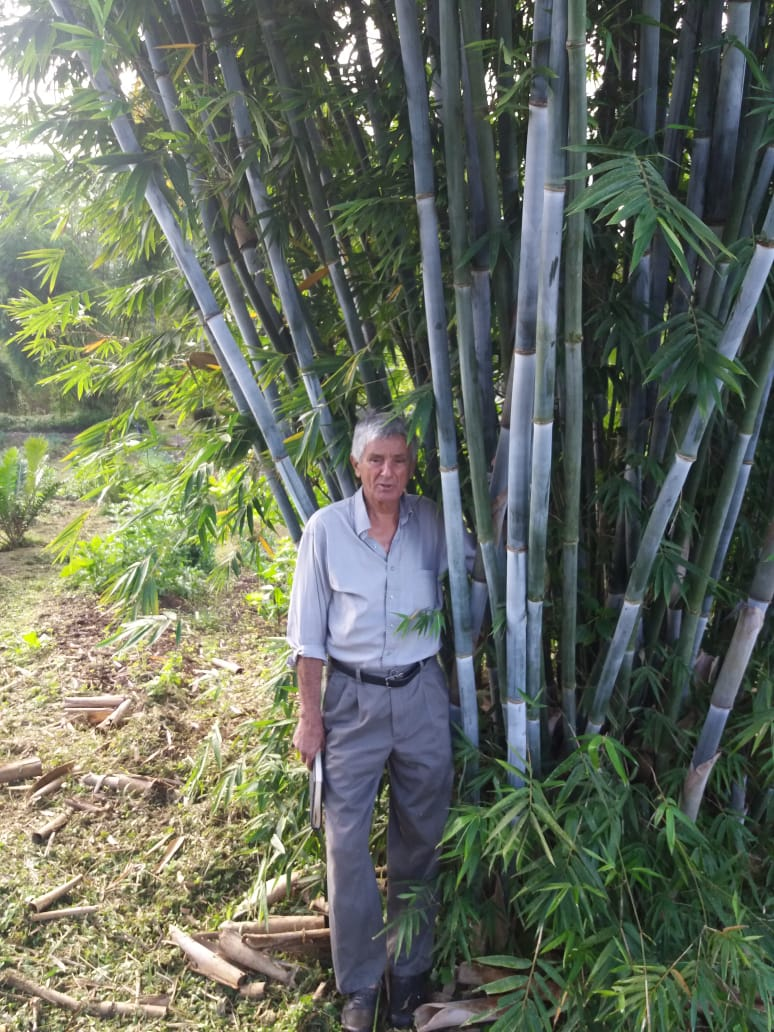 Alvaro and a prized blue bamboo, one of many species on the property.