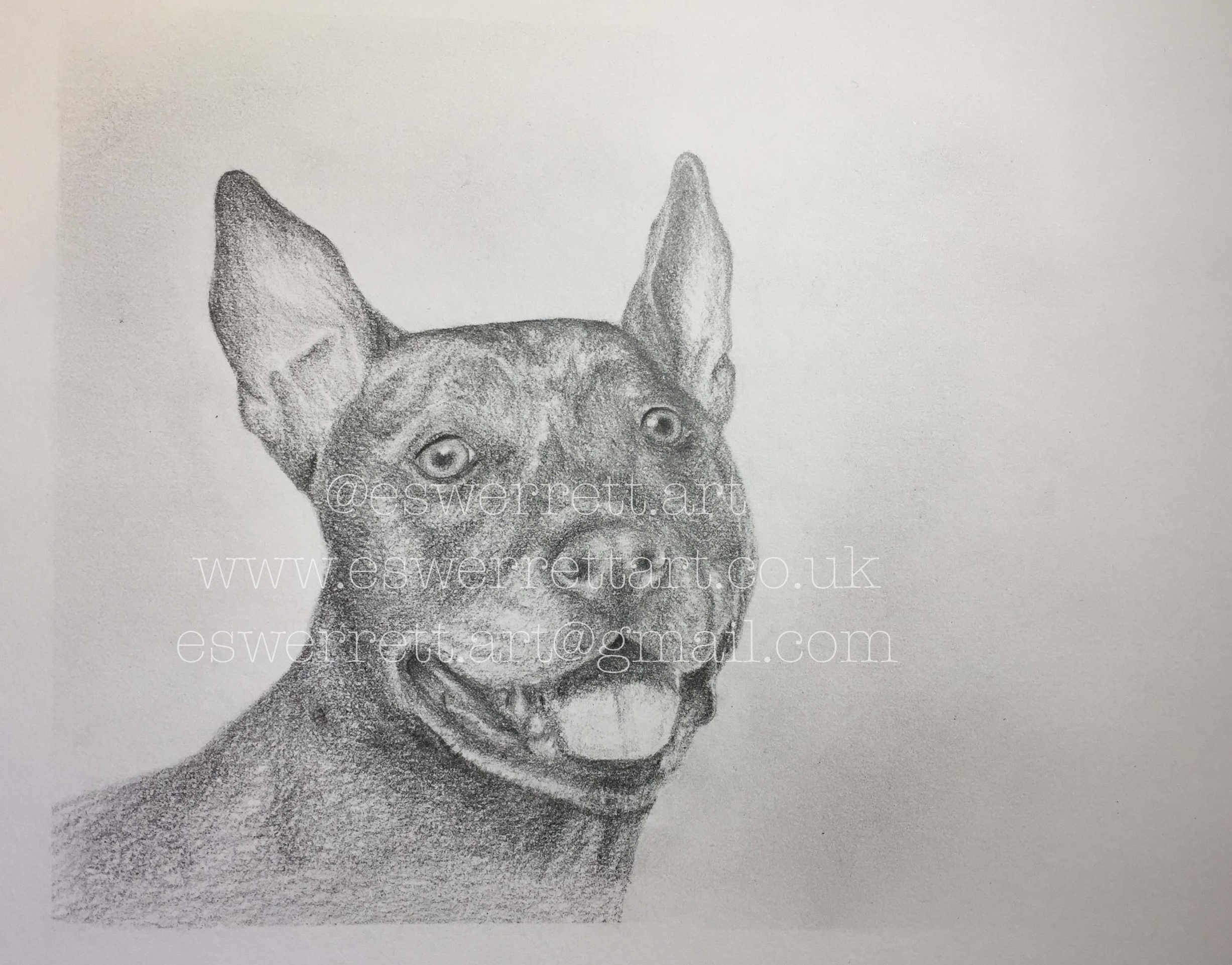 'Zara' - 5 x 7 inches in Graphite Pencil