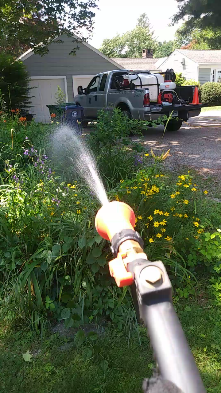 Click any of these links:  Instagram  ,  Facebook  or  YouTube  Pages to check out our full video clips of our all organic tick & mosquito control applications.