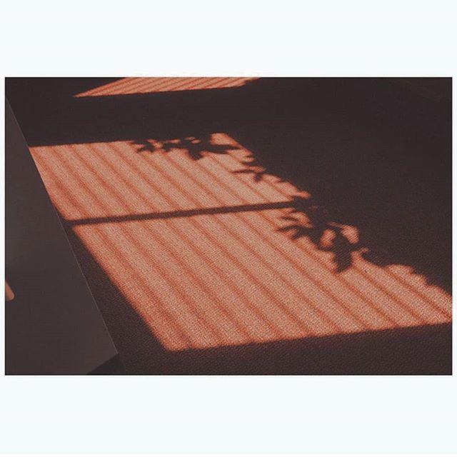 #fromthearchive #fromthestudio @lestemporary #yunkinKeophomma _____ Terre terre #collection #facesofthefrontier _____ #whpappreciateearth #whpsignsoftheseason #verybusymag #lekkerzine #swissmademinimal #brickseek #workinprogress #talentmanagement #cerealmag #Shadowhunters #gameoftones