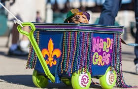 The Mystic Krewe of Barkus - This parade has literally gone the dogs...and their manly (and womanly) best friends. The Barkus parade route is in the French Quarter. The costumes are really wonderful to see. Some of the parade themes have included – Jurassic Bark and Joan of Bark.