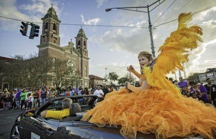 Yellow Wings.jpg