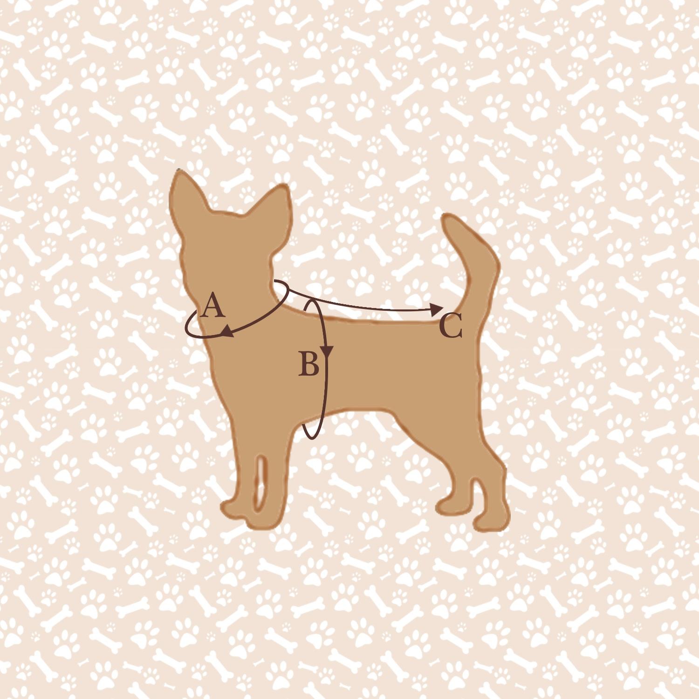 measure dog.jpg