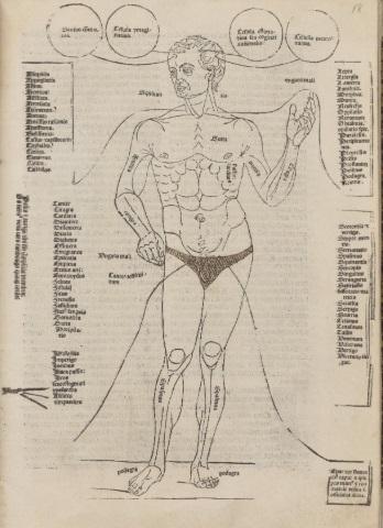 'Disease Man'