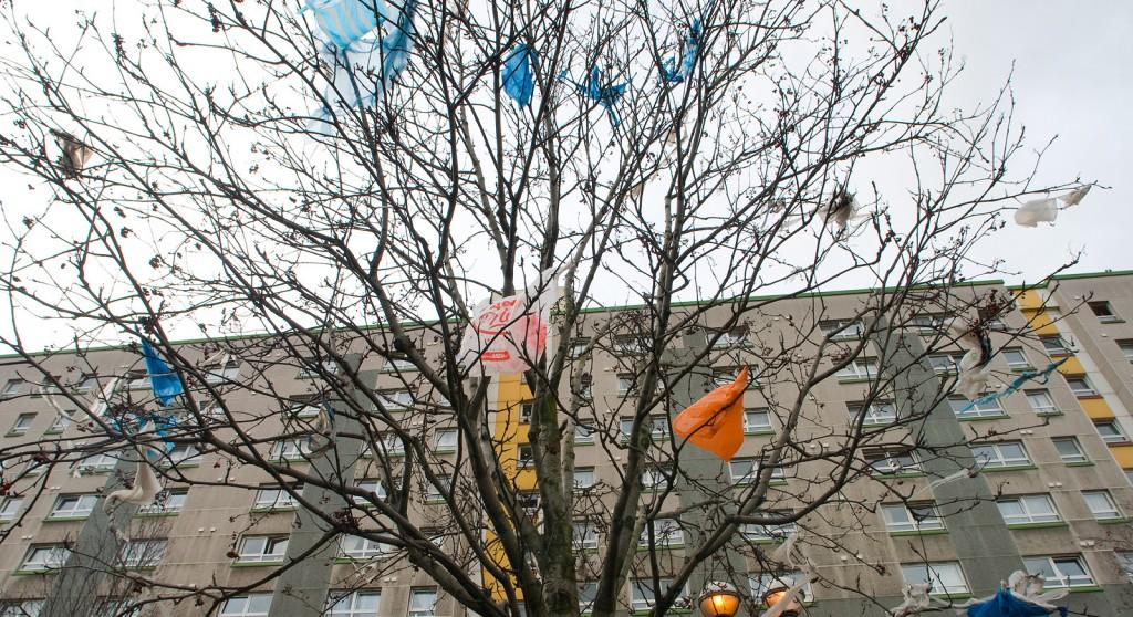 plastic_bags_in_tree_by_hamodia.jpg