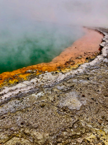 Two of the many colorful (and smelly!) geysers in Wai-o-tapu, a geothermal region 2 hours outside of Auckland.