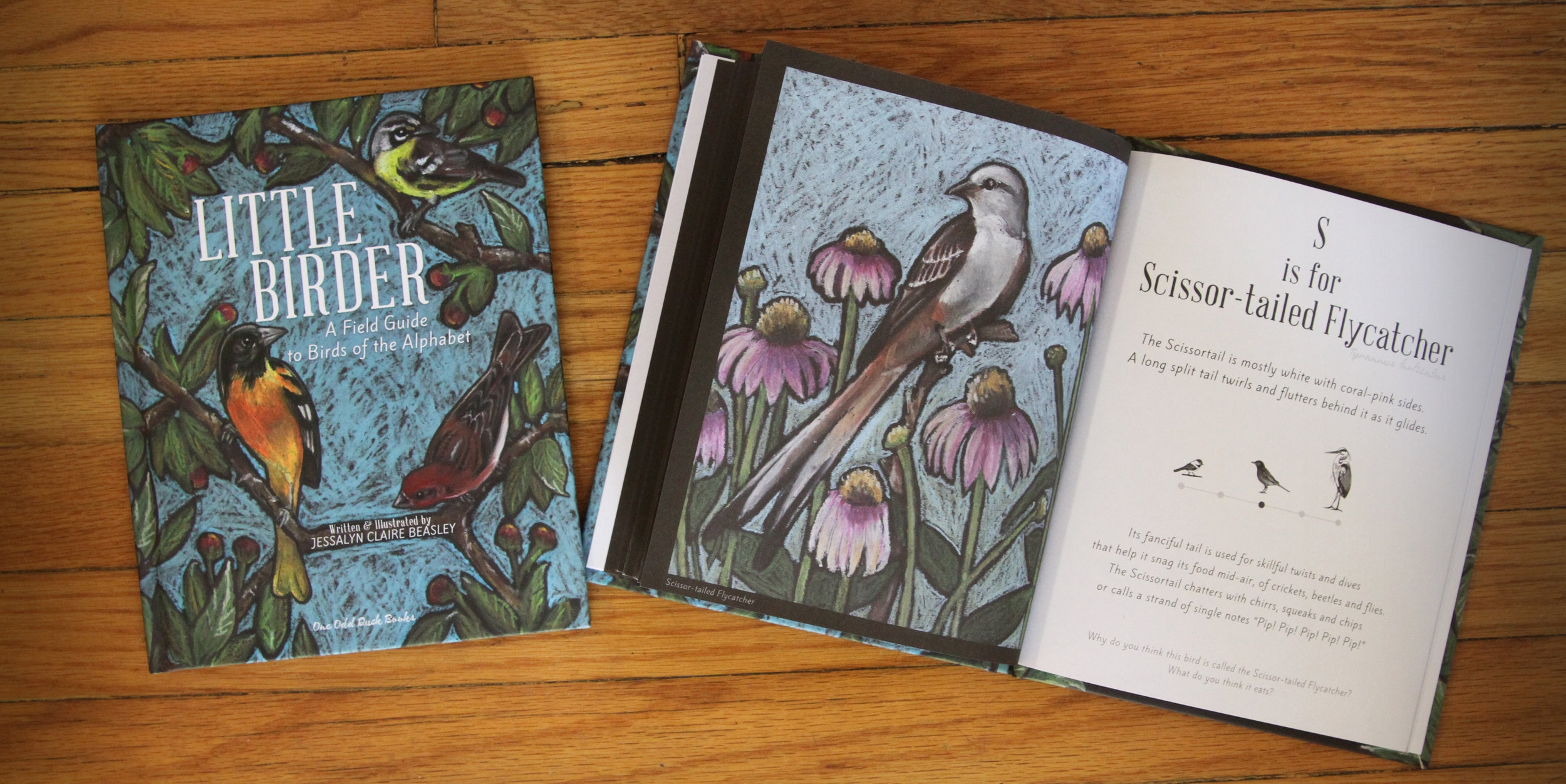 Little Birder Children's book