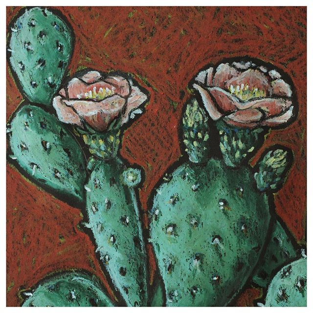 Cactus blooms are coming.  Prints of this prickly pear in bloom are not yet available in shop, but I will make them available soon. Sooner if there is any interest. DM me for information. Pricing same as similar 8x10 prints in shop link.  #cactusbloom #texas #texan #pricklypear #pricklypearcactus #westernart #springblooms #etsyseller #botanical #texan #reminderofhome #homesweethome #sweethome