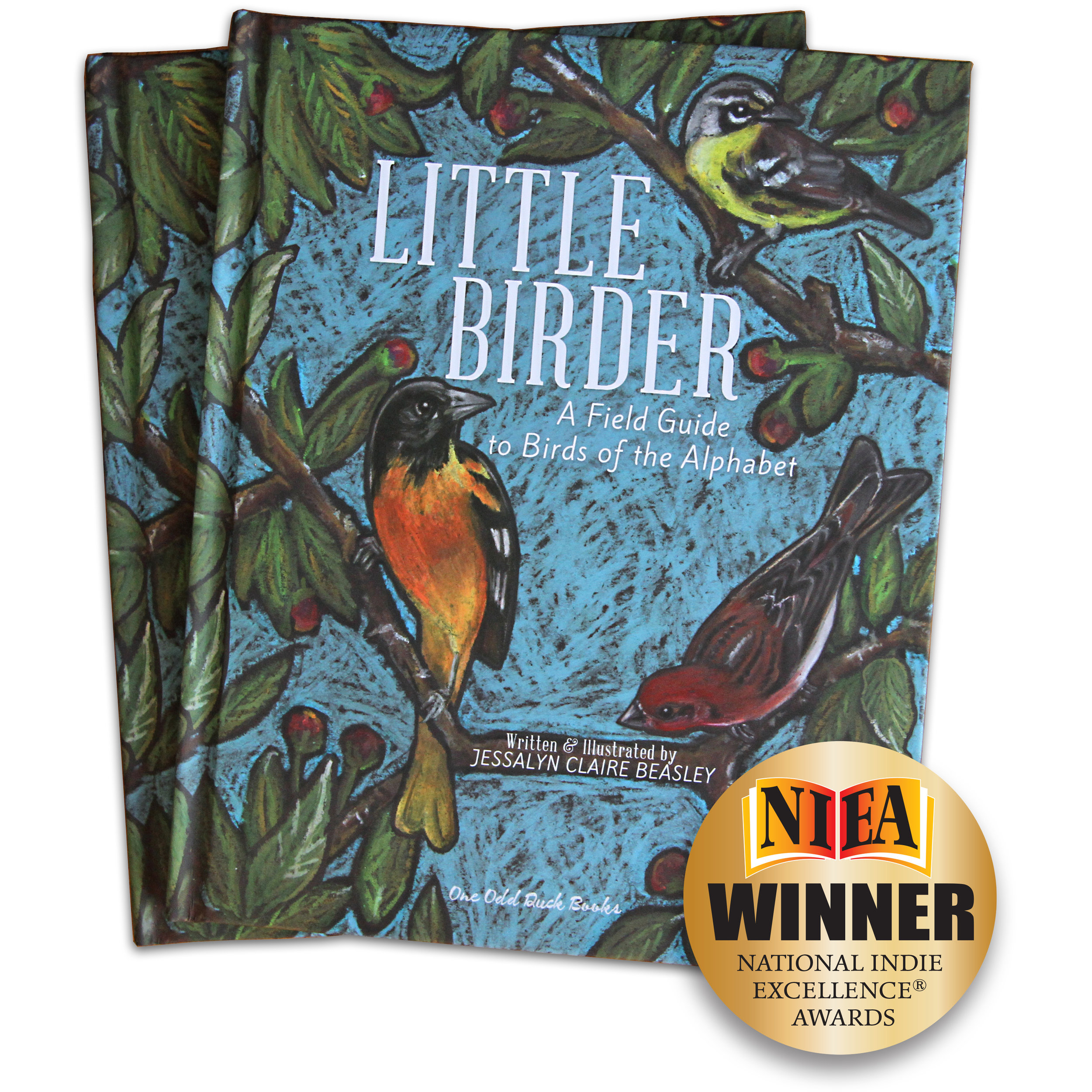 Little Birder Childrens book award winning