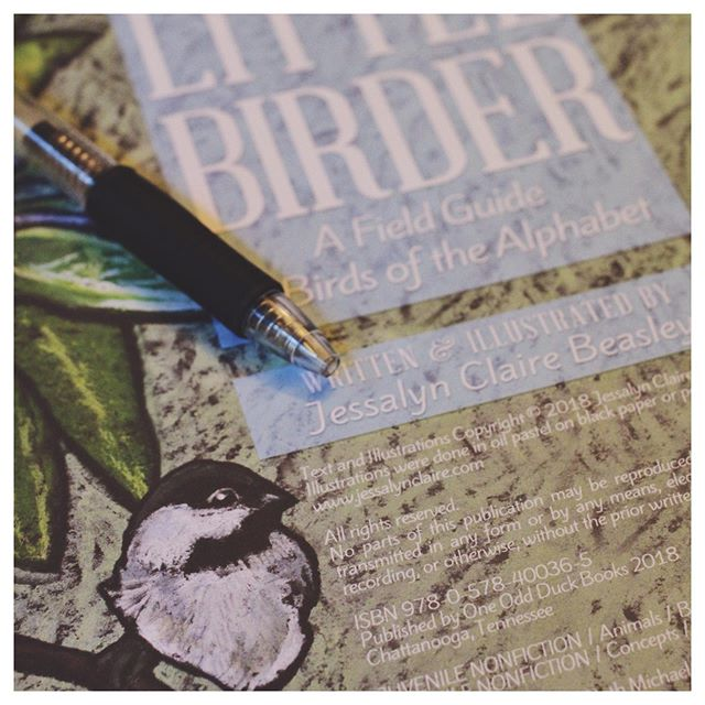 If you're in the Abilene, TX area on Saturday, June 8th, come to a Little Birder book signing event at Texas Star Trading Co. from 11-1.  June 6-8 is the 2019 Children's Art & Literacy Festival in my hometown, celebrating illustrator Peter Brown. So come enjoy all things children's literature in the Storybook Capital of America and stop by to visit me at Texas Star Trading Co.  #abilenetx #texasauthor #childrensliterature #littlebirder #birdbook #nationalindieexcellenceawards #booksigning #childrensbook #abilenetexas #texasstartradingco #downtownabilene #abilenedowntown