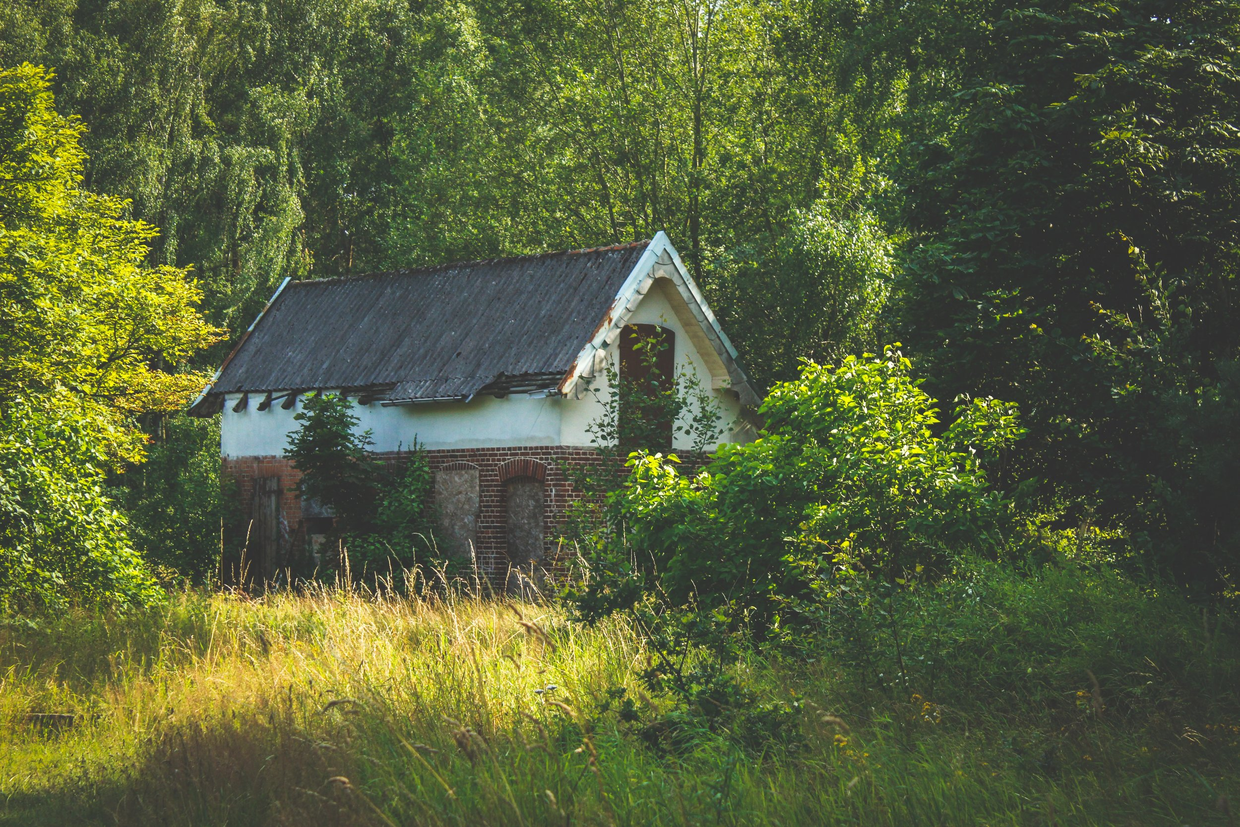 distressed-property-old-house.jpg