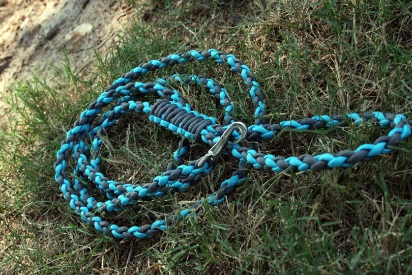 Dog-leash-made-from-paracord.jpg