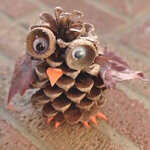 owl pinecone.jpg