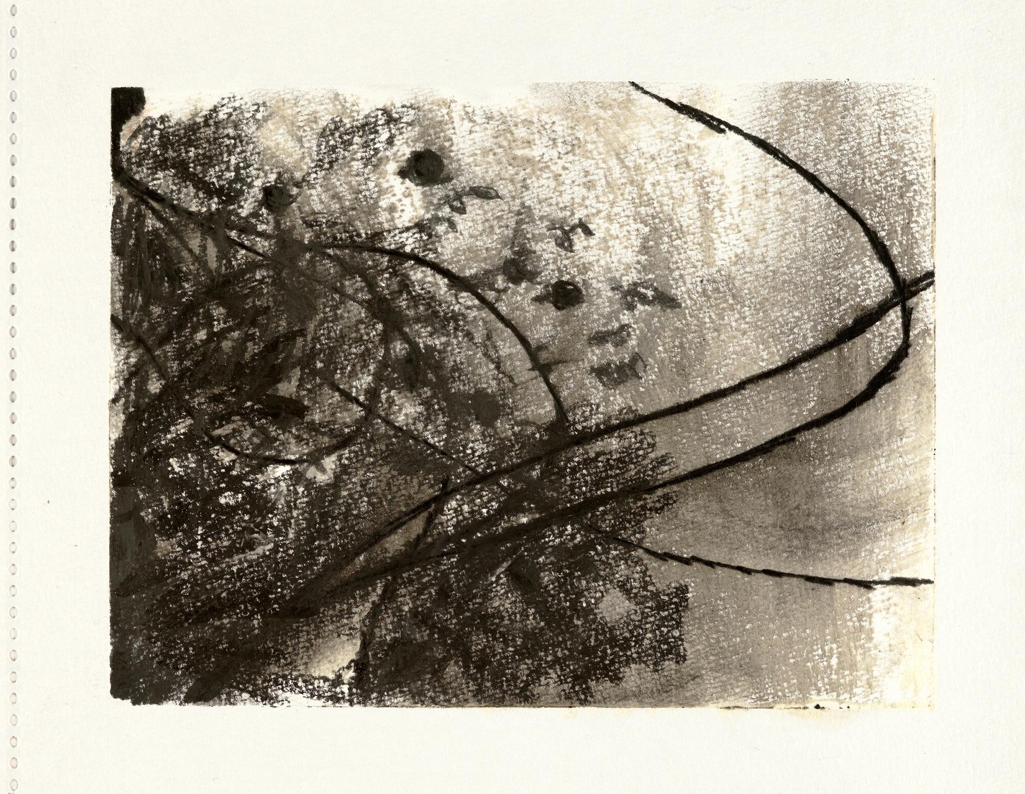 URK 12.jpg