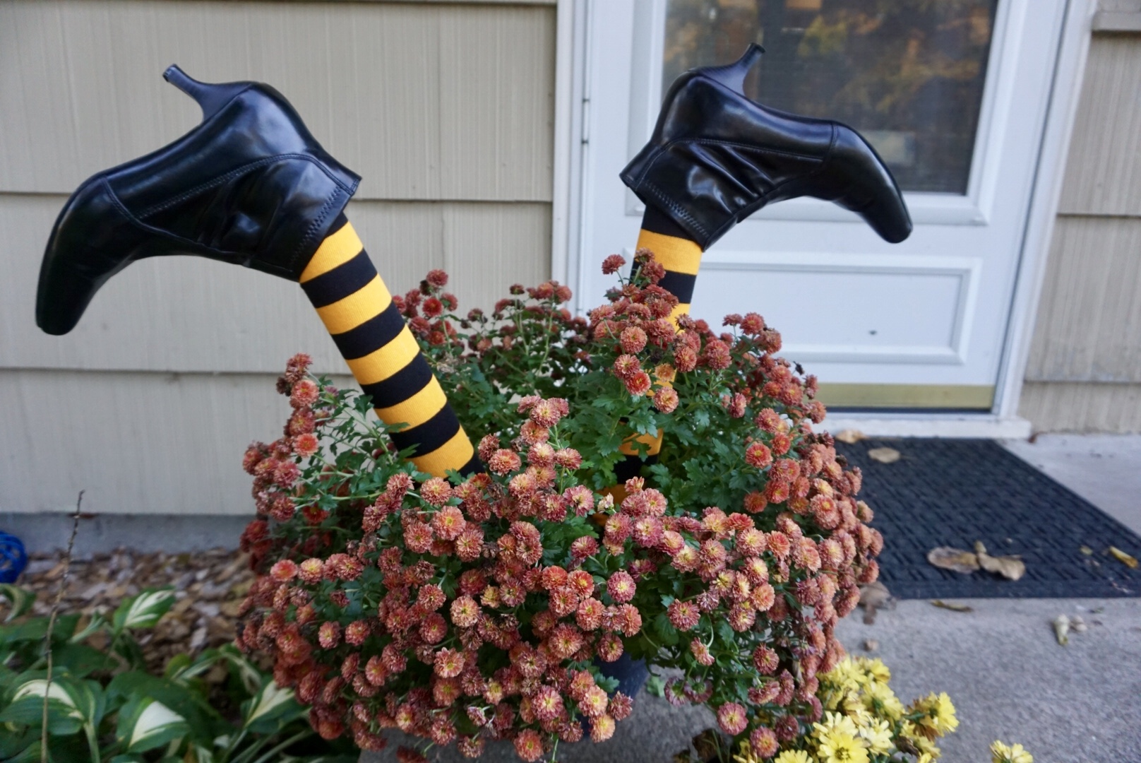 DIY witch legs make fall mum planters even more fun. #halloweendiy #halloweencrafts #halloweendecor #diyhalloweendecorations
