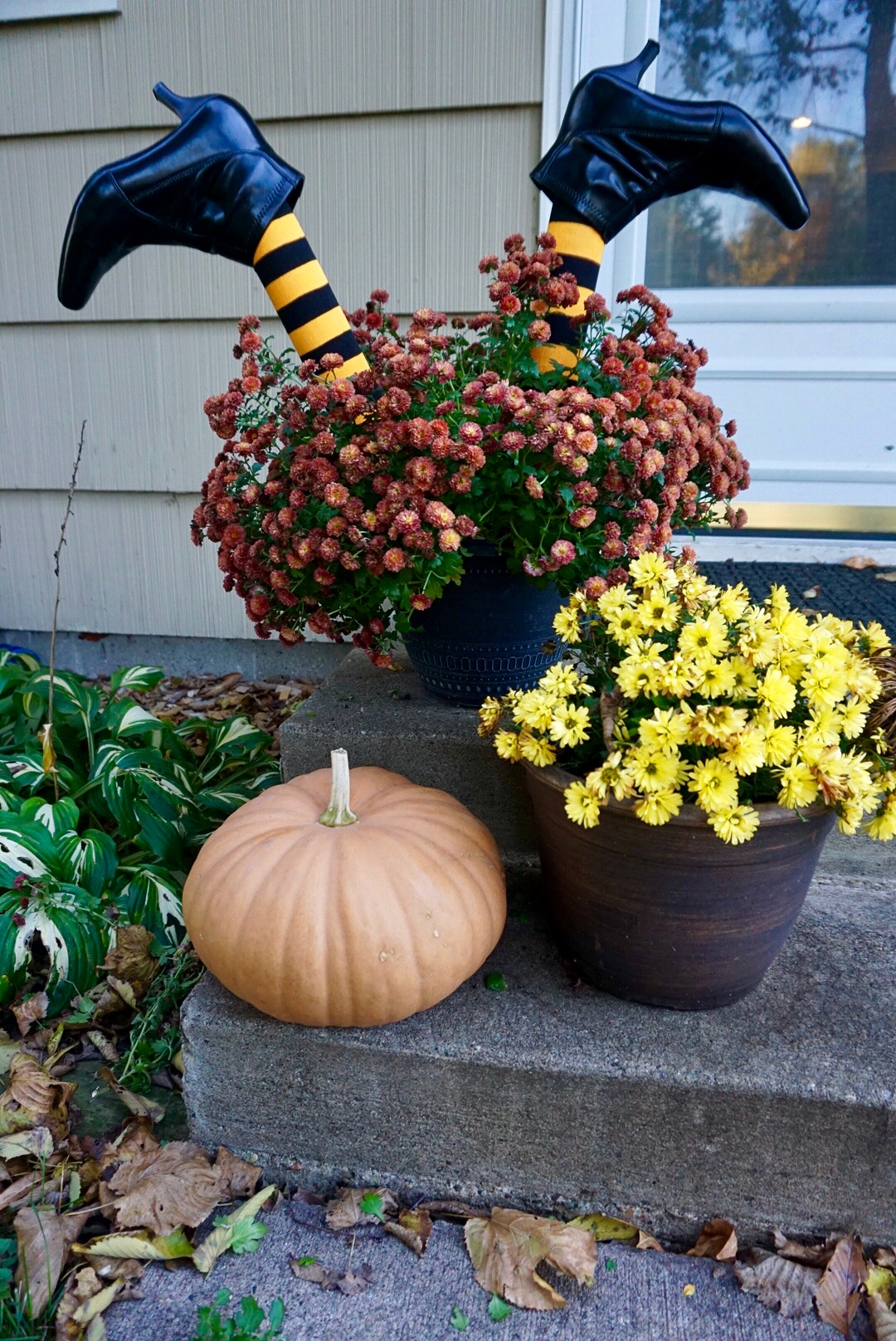 DIY witch legs make fall mum planters more festive! #halloweencrafts #halloweendiy #halloweendecorations