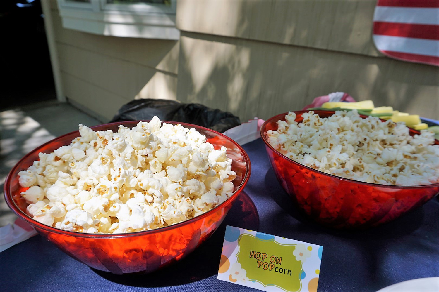 Hop on Popcorn for a Dr. Suess themed party